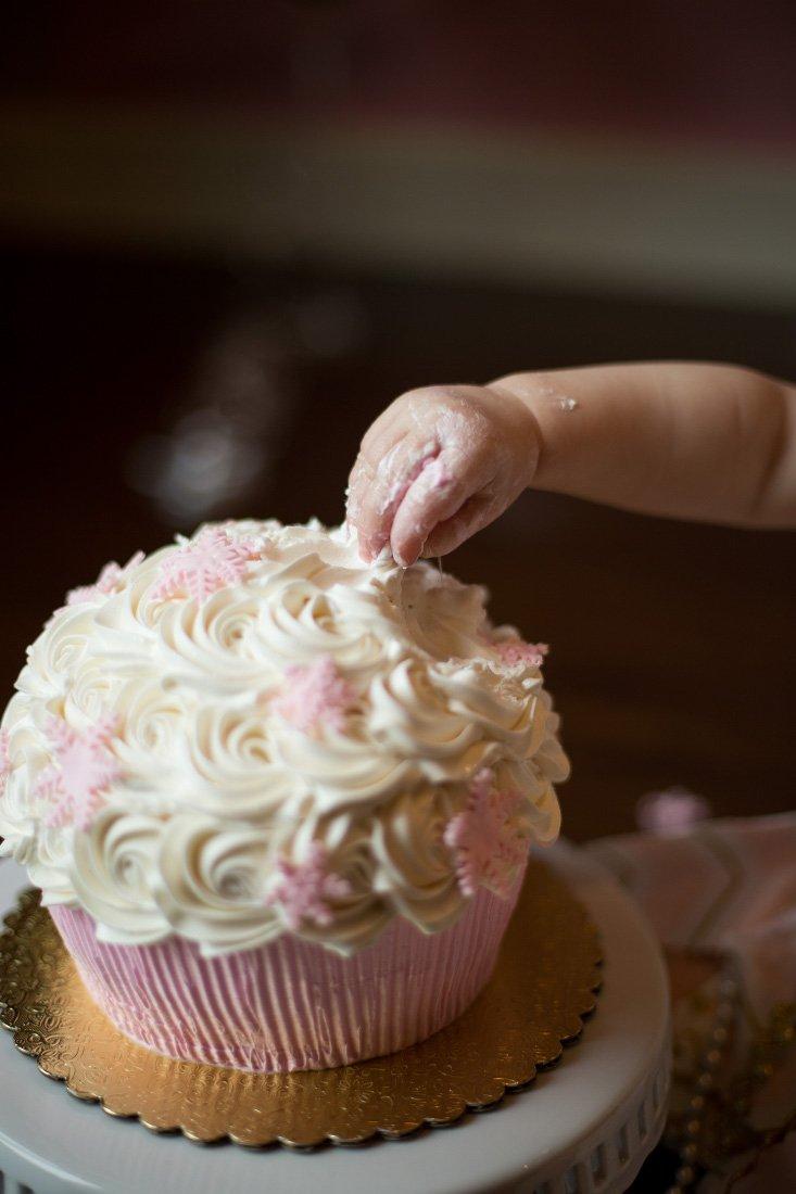1st year birthday cake smash photo shoot